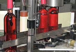 Circuito de vinos en patagonia