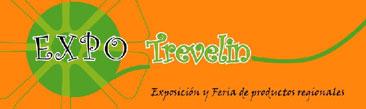 Expo Feria Trevelin