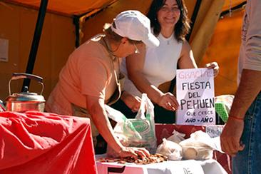 Fiesta Nacional del Pehuen Alumine @ Aluminé | Neuquén | Argentina