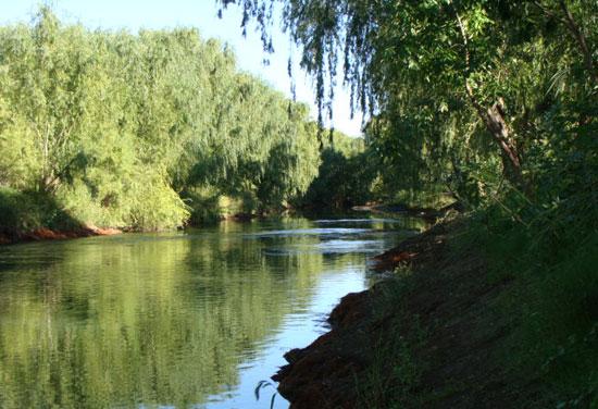 río Negro, Choele
