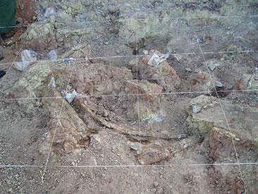 excavando cerca roca