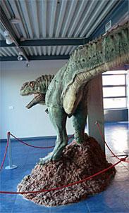 museo roca