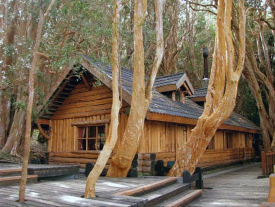 Bosuqe arrayanes, Bariloche