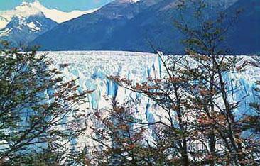 glaciar-mirador