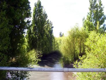 rio fenix, peroto Moreno