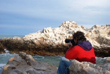 parque marino isla pinguino