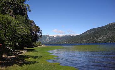lago rucachoroy