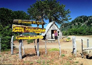 Ruta Mapuche, neuquen