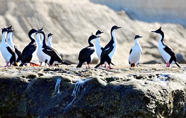 Puerto Madryn otonio